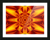 Fire Flowers 104 Picture Frame print