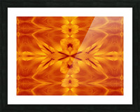 Fire Flowers 117 Picture Frame print