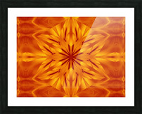 Fire Flowers 118 Picture Frame print