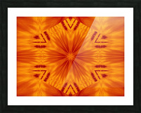Fire Flowers 121 Picture Frame print