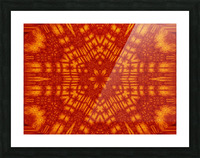 Fire Flowers 146 Picture Frame print