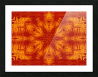 Fire Flowers 153 Picture Frame print