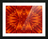 Fire Flowers 190 Picture Frame print