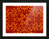 Fire Flowers 207 Picture Frame print