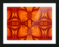 Fire Flowers 268 Picture Frame print