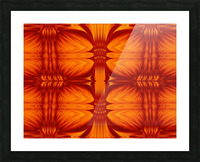 Fire Flowers 270 Picture Frame print