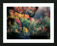 autumn abstract view Picture Frame print