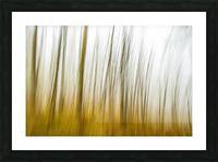 Tree Dreams in Orange Picture Frame print