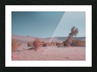 Misty Desert Picture Frame print