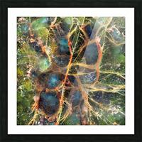 Composicion120 Picture Frame print