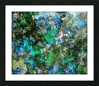 The wet and the moss Picture Frame print
