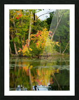 Automne Picture Frame print