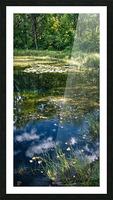 Monet style 2 Picture Frame print