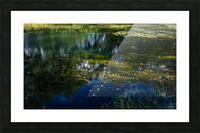 Monet style 3 Picture Frame print