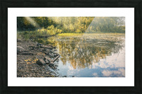 Monet style 4 Picture Frame print