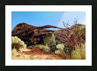 Landscape Arch I Picture Frame print