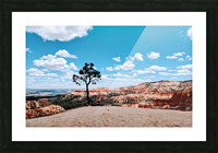 Bryce Canyon V Picture Frame print