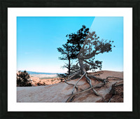 Bryce Canyon IV Picture Frame print
