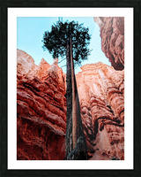 Bryce Canyon II Picture Frame print