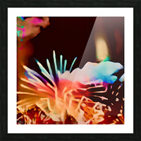 Anemone in the Luminescence Seas of My Soul Picture Frame print
