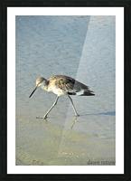 Ba Bum Bird Picture Frame print