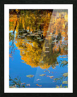 autumn reflection Picture Frame print