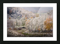 Autumn snow on Back Hollow Road Tucker County West Virginia Picture Frame print