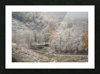 Back Hollow Road Tucker County WV autumn snow Picture Frame print