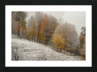 October Snow Canaan Valley WVa Picture Frame print