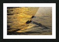 Lake Erie waves 9 Picture Frame print