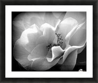 Linen  Picture Frame print