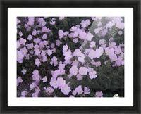 Flower Garden Picture Frame print