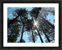 Look Up Impression et Cadre photo