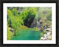 Pond Picture Frame print