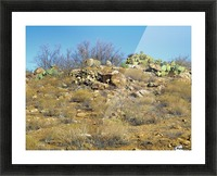 Rock n Cactus Picture Frame print
