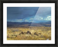 Storms Comin' Picture Frame print