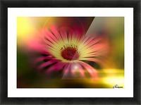 little sunshine Picture Frame print