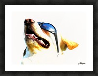 doggy Picture Frame print
