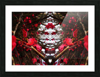 flower83 Picture Frame print