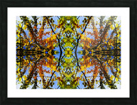 flower43 Picture Frame print