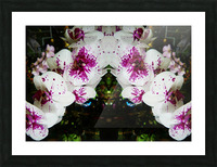 flower63 Picture Frame print