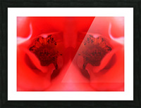 flower19 Picture Frame print
