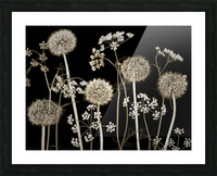 Meadow flowers Picture Frame print