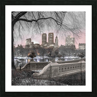 Central park with Manhattan skyline, New York Picture Frame print