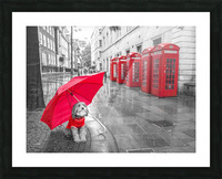 Dog with umbrella on London city street Picture Frame print