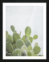 Cactus plant Picture Frame print