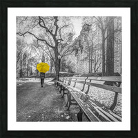 Tourist on pathway with Yellow umbrella at Central park, New York Picture Frame print