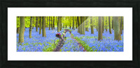 Bicycle in spring forest Picture Frame print