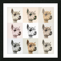 Collage of Alpacas in multicolour Picture Frame print