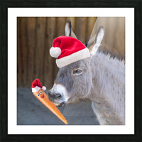 Donkey with Santa hat Picture Frame print